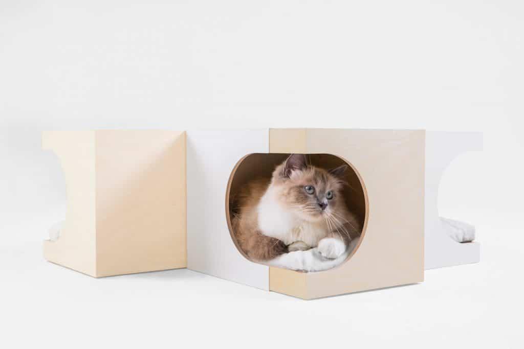 box di design per gatti componibile