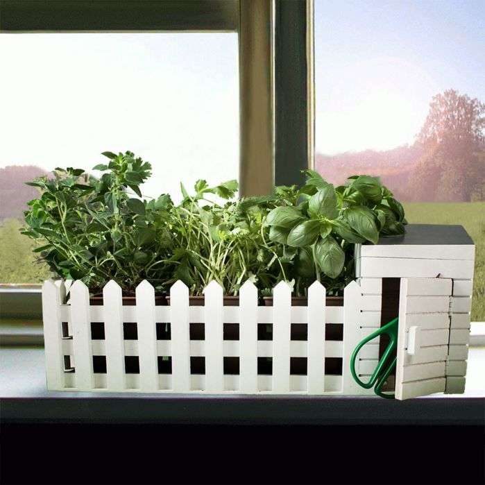 troppotogo mini giardino da interni con semi fillyourhomewithlove