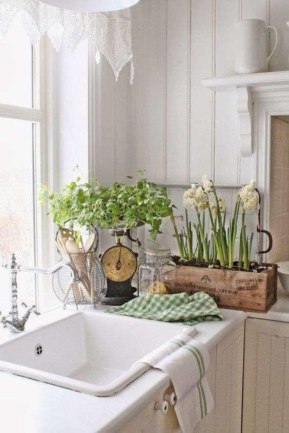 fiori in una cucina provenzale