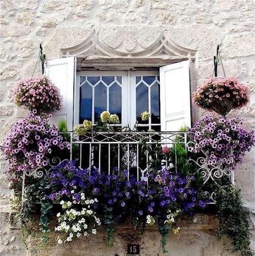 case provenzali con balconi e fiori appesi