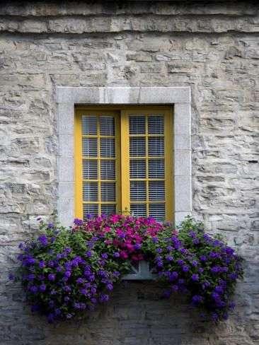 case provenzali con finestra e fiori a contrasto